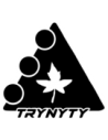 Trynyty Scooter Brand